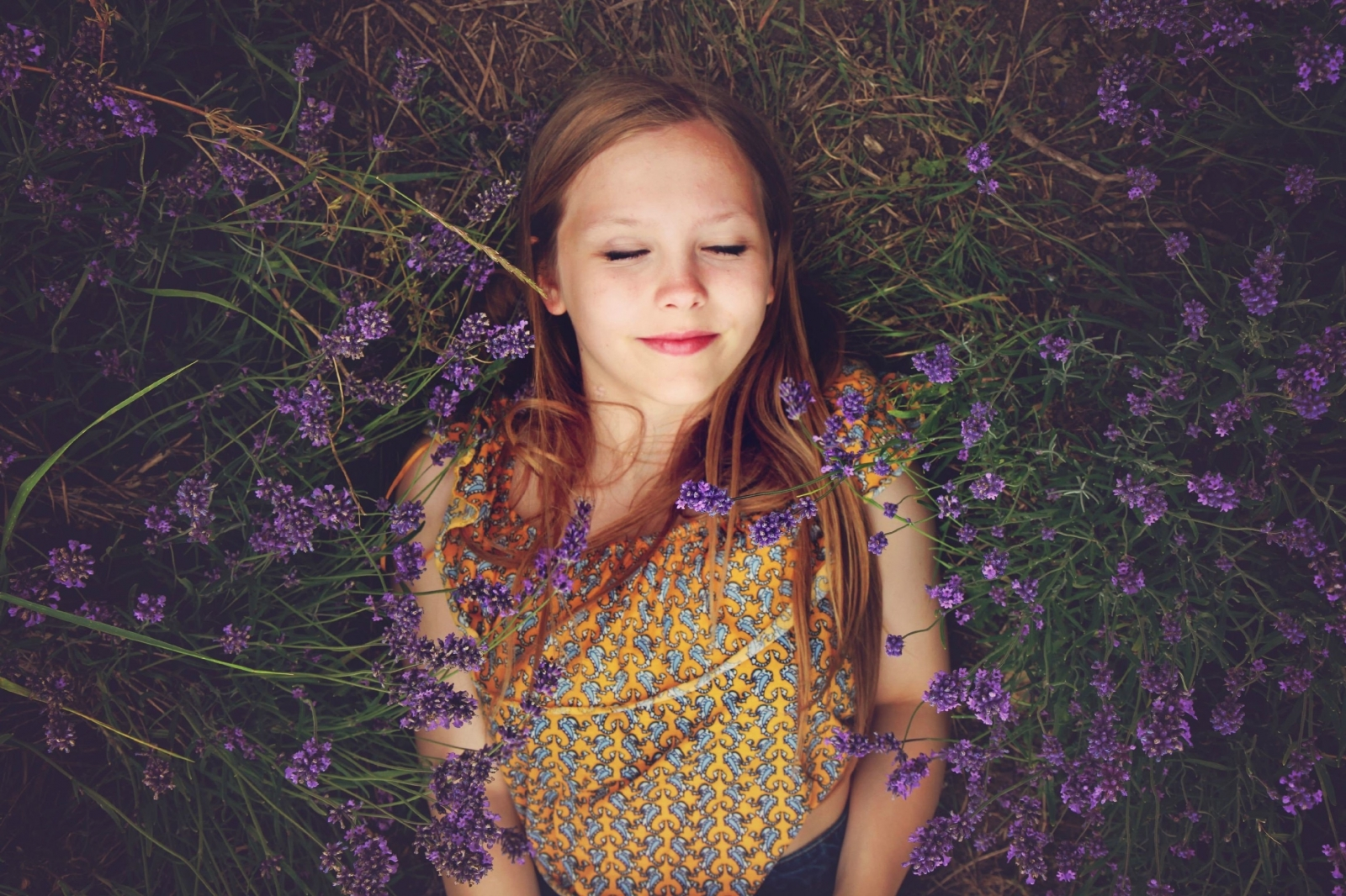 girl laying down in field of lavender